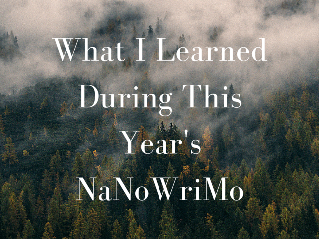 What I Learned During This Year's NaNoWriMo